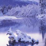 Alasca(2)