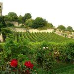 St-Emilion, França